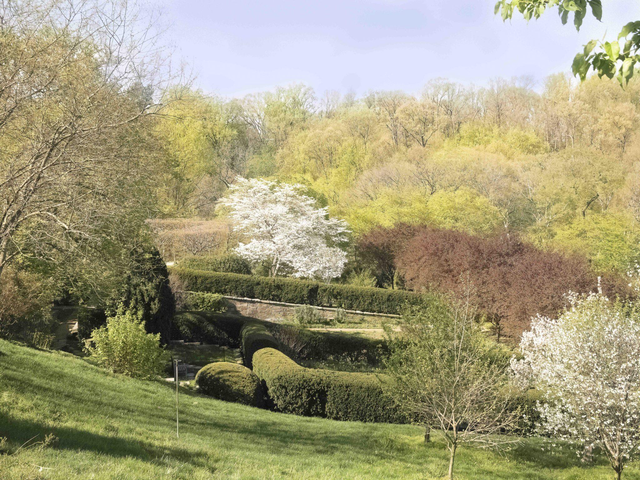 Dumbarton Oaks, Museum and Gardens